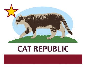 cat_r01.jpg